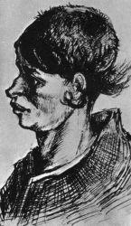 Hlava selky, Nuenen, leden 1885 (z dopisu č. 392).