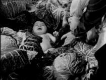 Vittorio De Sica: Zázrak v Miláně