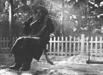 Akira Kurosawa: Žít