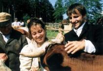 Karel Kachyňa: Kráva