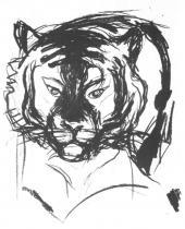 Tygří hlava. Litografie. 1909. 35 × 25,5.