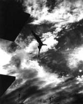"""""""Život ve lži"""" - Mýtus Leni Riefenstahl"""